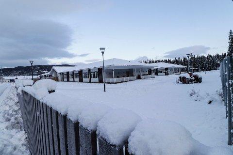 TRINN 2: Mye tyder på at Vefsn kommune innen få år må bygge ut flere sykehjemsplasser, i første omgang trolig på Fredlundskogen sør for Mosjøen.