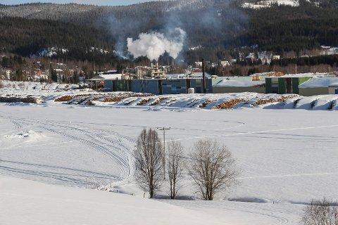 Asgeir Almås spør om sagbruksplanene ved Arbor i kommunestyremøtet den 13. februar.