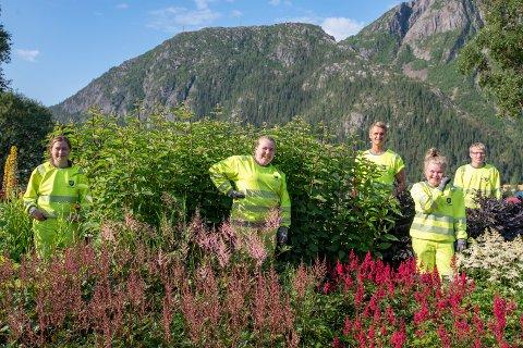 Thale Helfjell (17), Dina Hines (18), Vilde Markussen (18), Mads Claussen(23) og Sondre Tobias Olsen(16) er et knippe av flere finer ungdommer har tatt seg av Vefsn Kommunes parkområder i sommer.