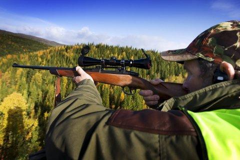 BIDRAR: Elgjegerne bidrar til kommunekassa ved å betale fellingsavgidt for skutte elg.