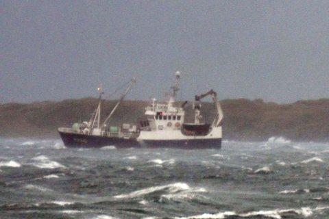 Rederileder fikk SMS-trussel etter at fiskebåten «Øksnesværing» ble observert i nærheten av døds fisk på havet. Arkivfoto: Kai Nikolaisen