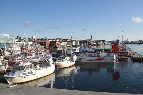 FRYKTER FLUKT: Politikerne i Vardø frykter konsekvensene av at det nå er åpnet for salg av kvoter ut av fylket.