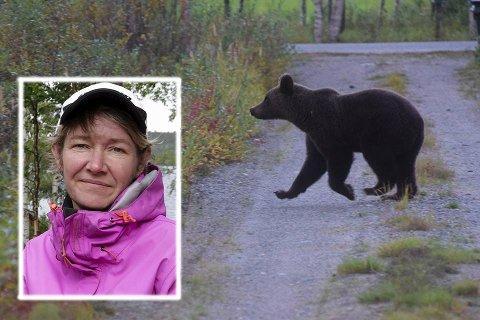 LITT FOR NÆRGÅENDE: Hanne-Tove Eike Randa drifter Øvre Pasvik Camping etter svigerforeldrene Svenn og Edith. Den siste uken har de hatt en litt for nysgjerrig bjørn luskende rundt campinghytter og hus. Nå håper de på litt mer trygge omgivelser etter at bjørnen er skutt.