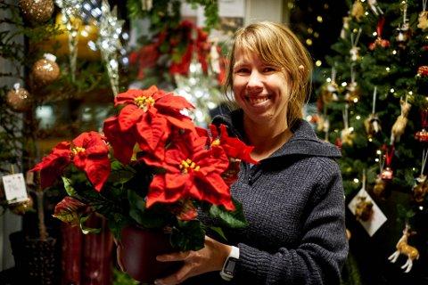 IKKE ALLTID SÅ LETT: Det er ikke alltid så lett å ta hele julehandelen lokalt. Denne gangen ble det en miks for redaktør Anniken Renslo Sandvik. (Men julestjerna på bildet var i hvert fall lokal i sin tid.)