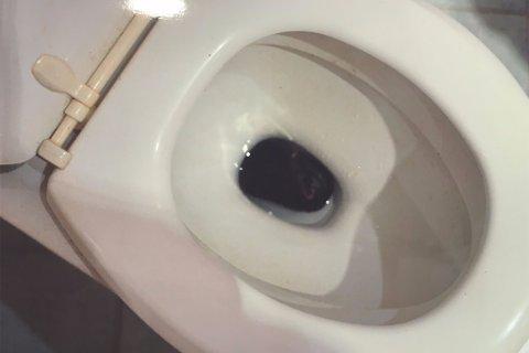 Kaffi ble valgt før morgenritualet, da det lå noe sort i toalettskåla. Etterhvert gikk det opp for huseieren hva det var som lå der.
