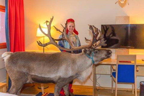 REIN PÅ ROMMET: Scandic-hotellet i Karasjok hadde onsdag besøk av 7 store turoperatører. Anne Louise Næss Gaup tok med seg en rein inn på et hotellrom i anledningen.