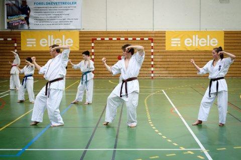 David Vorren (16) Barentscamp karate i Vadsøhallen lørdag 4. mars 2017.