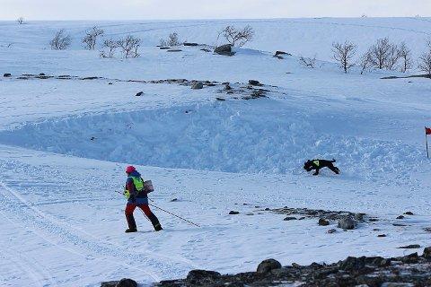 STYRKET BEREDSKAP: Norske Redningshunder Finnmark er bedre rustet i år enn på mange år sier stedfortredende beredskapsansvarlig Karianne Holm-Varsi.