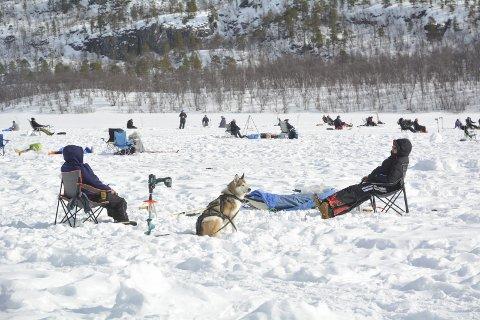 INGEN PÅSKEKOS PÅ ISEN: Kåfjord jeger- og fiskerforening har avholdt sin tradisjonsrike isfiskekonkurranse på Mathisvannet i påsken. I år avlyses den på grunn av mye snø og koronaviruset.