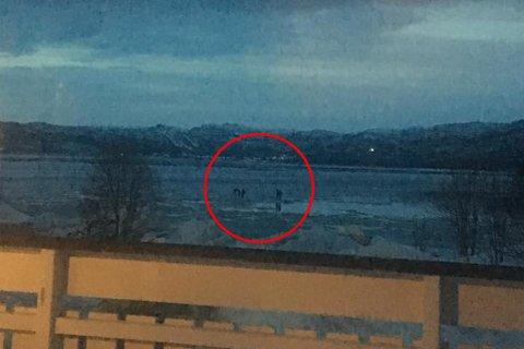 UTRYGG IS: Fem barn leker på isflakene ved elvemunning.