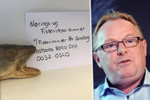 BEVARER ROEN: Fiskeriminister Per Sandberg tar kystopprørets torskesending med stor ro.