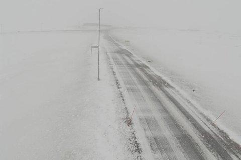 VINTERLIG: Her på Fv. 890 i området Gednje ligger det snø på bakken.