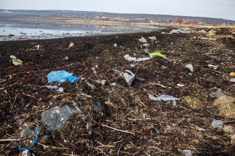 PROBLEM: Forsøpling og plast i naturen er et stort problem