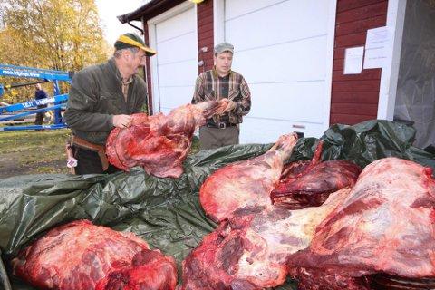 VEIER SELV: Elgjegere i Karasjok og Porsanger kommune kan i år veie elg selv.