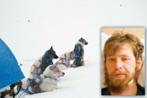 FJELLVANT: Myrseths to hunder forsvant i snøstormen. Her er de avbildet ved en tidligere anledning sammen med andre hunder.