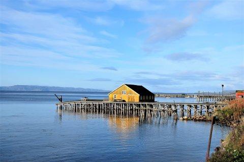 FALLEFERDIG: Slik seg kaia ut i dag. Som vi ser, er den på god vei ut i sjøen.