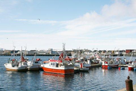 REN HAVN: Kritikerne av oppdrettsnæringen vil at Vardø havn vil framstå som i dag. Matfatet er rett utenfor havna og kan ikke risikeres, mener fiskere.