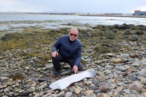 SPEKK: Havnesjef Eirik Karlsen fikk melding om spekkflak i ytebyfjøra i Vadsø, men hvalfangerne har anledning til å dumpe spekk.