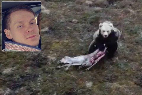 FORTVILER: Reineier John Ánte Oskal fortviler. Han og tre yrkesbrødre har mistet flere hundre reinkalver til slagbjørn. Men etter to døgn har de ennå ikke fått skadefellingstillatelse. Montasje.