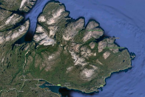 GÅTT SEG BORT: Sau som ikke hører hjemme i området funnet i Adamsdalen/Høyden. Foto: Google Maps