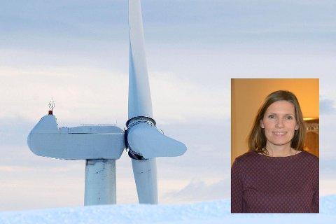 UENIG: Ingen områder i Øst-Finnmark blir sett på som aktuelle for vindkraft av NVE. Det er Lebesby-ordfører Stine Akselsen uenig i.