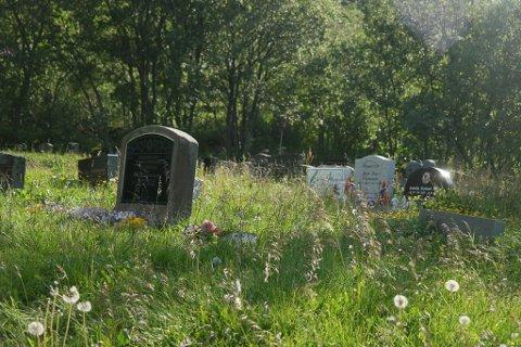 Mye ugress: Det er mye ugress som stikker opp mellom gravene i byens gamle kirkegård. Det har skapt reaksjoner.