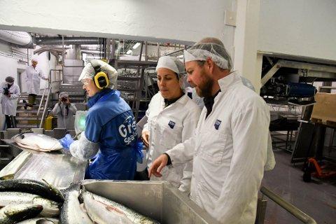OMVISNING Næringsminister Torbjørn Røe Isaksen (H) fikk fredag omvisning av Stine Torheim på Grieg Seafoods anlegg på Simanes i Alta kommune.