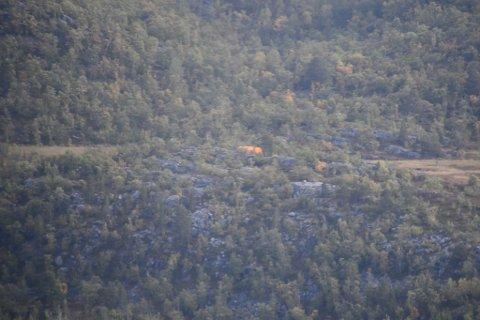 TELT: Et oransje telt er satt opp på ulykkesstedet for å beskytte vrakrestene eter helikopteret som styrtet lørdag.