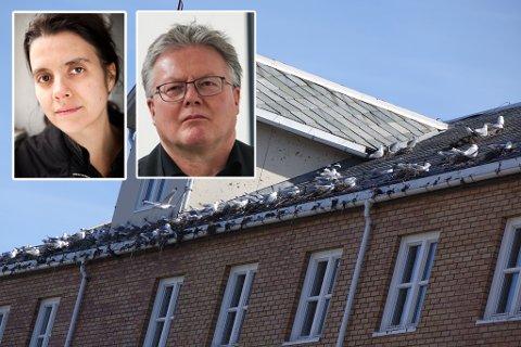 UENIGE: NOAH-leder Siri Martinsen mener det er flott at påtalemyndigheten reagerte. Rådmann Leif Vidar Olsen sier at kommunen har innvendinger mot bevisgrunnlaget og straffeutmålingen.