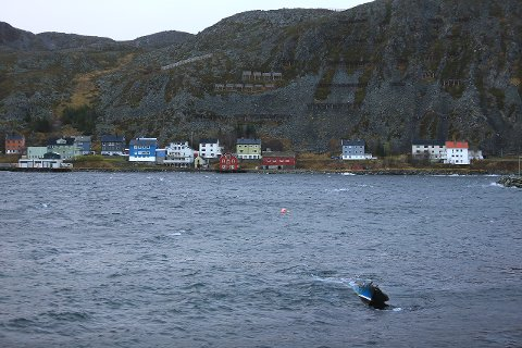 SANK: David Ingilæs båt, som han først fikk nå i høst, sank i fjærsteinene etter brannen i natt.
