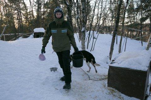 KONTROLL: Hundene har spilt en viktig rolle hele livet til Espen.