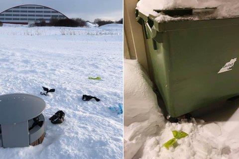 LEGGES UTENFOR: Det er flere steder man finner hundebæsjposer utenfor søppeldunkene.