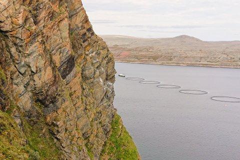 ØNSKER EN UTVIDELSE: SalMar vil gjerne utvide oppdrettsvirksomheten i Syltefjord (bildet), men da må først kommunen vedta en plan for akvakultur for området. Den planen var satt opp på sakslista denne uka, men ble utsatt som følge av et fellesforslag fra Arbeiderpartiet og Høyre.