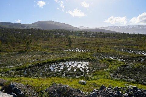 STORT OMRÅDE: Her er deler av området som boligfeltet i Skoddevarre i Alta er tenkt.