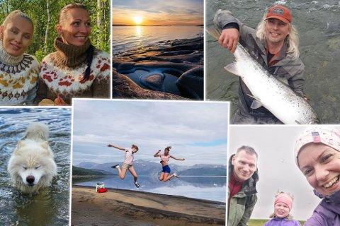 MANGE FØLGERE: Dette er noen få av mange bilder som er tagget med #ifinnmark. Kolasj.