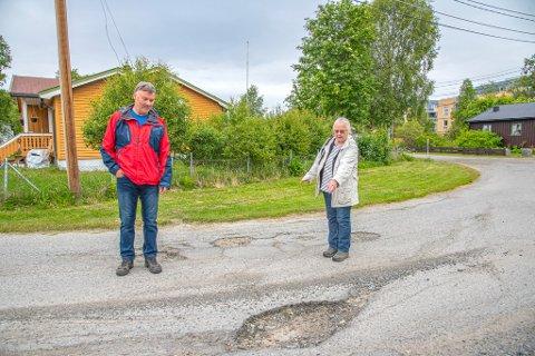 «HÅPLØST»: Arnfinn Johansen bor i gata, og har selv måttet fylle opp hullene med sand og grus. Også nabo Gunn-T engasjerer seg i saken. Nå vil de ha ny asfalt før bilene ryker.