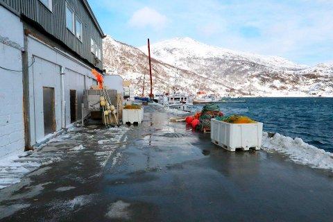 LØKSFJORDBRUKET:  Lokalbefolkningen og fiskerne håper på nye eiere som klarer å få hjørnesteinsbedriften på beina igjen.