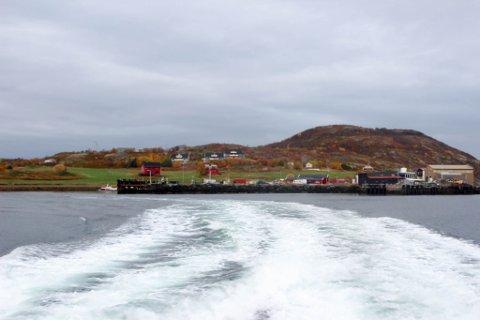 LEVER I DET USIKRE: På Årøya er det to gårdsbruk som til sammen har rundt 100 dyr. Jan Erik Johnsen har selv 70 dyr på bås, og han frykter at hans dyr må lide om de blir syke utenfor dagens båtruter ut til øya.