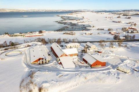 GOD UTSIKT: Gårdsbruket på Skogn har beliggenhet med utsikt over Trondheimsfjorden.