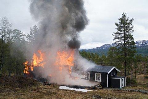 BRENNER NED: Hytta ved Tomtvatnet i Levanger brenner kontrollert ned onsdag formiddag.