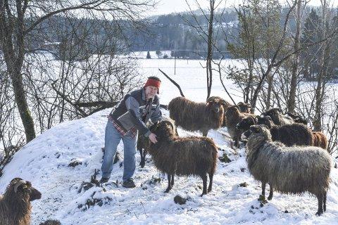BONDE: Endelig ble Rune Westeng bonde, som han har drømt om nesten hele livet. – Egentlig kunne jeg tenkt meg å drive med ku, men da må det så store investeringer til. Sau er også fint! De holder kulturlandskapet i hevd, sier han fornøyd. Alle foto: Anne Enger Mjåland
