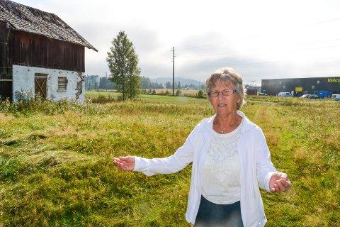 VILL KJØPE: Anne Lise Torvund ønsker å kjøpe Holen for å ta vare på stedet som et kulturminne over Bjørkelangen, men verken Utbyggingsselskapet eller Aurskog-Høland kommune var interessert. Foto: Anne Enger Mjåland