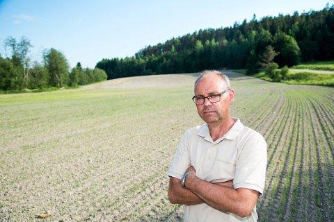BEKYMRET: Leder Sigurd Enger i Akershus Bondelag er bekymret for kornavlingene. FOTO: ANDREAS LEKANG