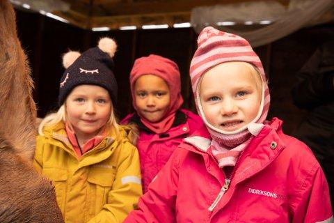 STERK OPPLEVELSE: Det var tydelig at det var en sterk opplevelse, både litt ekkelt men også spennende for enkelte av barna. Fra venstre, Sofie Bratteng Johannesen, Thèa Engeland og Victoria Brandvik.