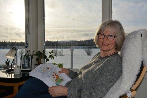 Oddlaug Elgetun skriver om utviklingen av Hemnes, som også stod på dagsorden under folkemøtet torsdag kveld.