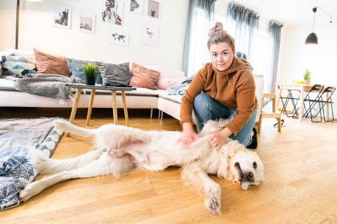 OVERLEVDE SÅ VIDT: Tico er en av mange hunder som har blitt dårlig den siste tiden. Eieren hans Anna Godding er glad for at hennes firbeinte bestevenn fikk raskt hjelp hos Skedsmo Dyreklinikk.