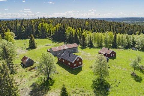 I TENKEBOKSEN: Kjøperne av Lundberg Skog vil enten klage på vedtaket eller søke som privatpersoner. Foto: Ketil Koppang Landbruks- og Næringsmegling AS