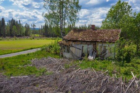 SMÅBRUK: Dersom du er ved godt mot, kan denne eiendommen bli en småbruksdrøm.