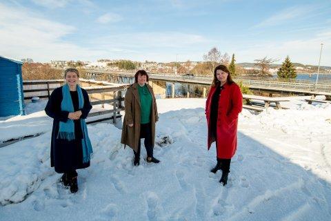 JUBLER FOR MIDLER: Ida Lindtveit Røse (Krf), Margrethe Prahl Reusch (V) og Turid Kristensen (H) er godt fornøyde med at det blir bevilget 795 millioner kroner til ny Glommakrysning i løpet av første NTP-periode.