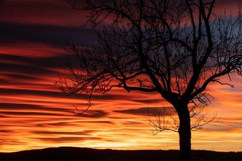 SOLNEDGANG:  Slik så himmelen over Bjanes ut lørdag kveld.